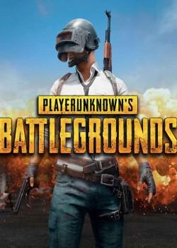 PlayerUnknown's Battlegrounds PC Steam cd-key