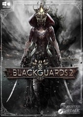 Blackguards 2 Steam Key