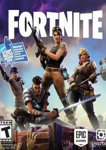 Fortnite Standard Edition CD Key PC